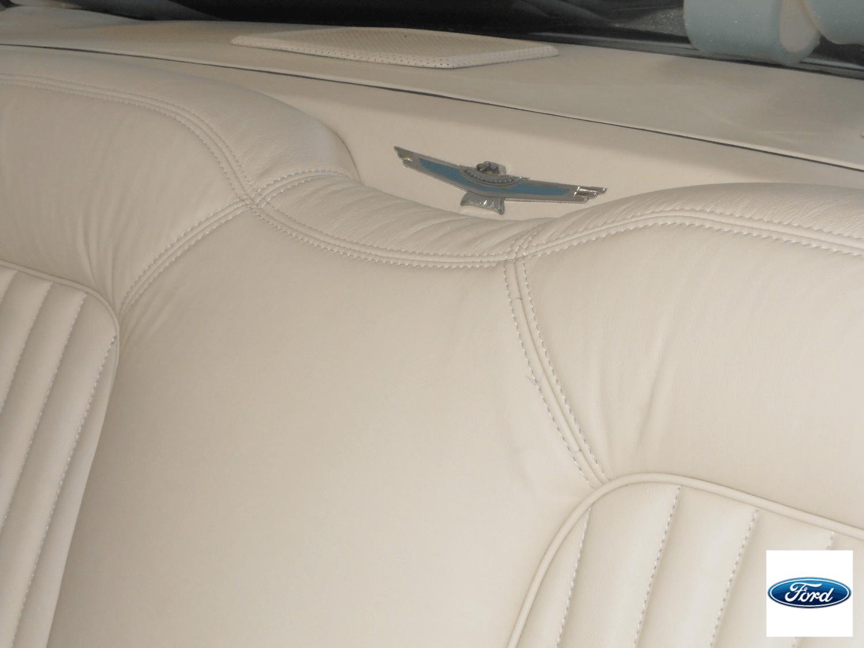 Thunderbird (5)